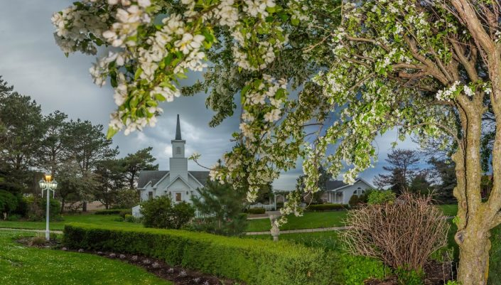 White flowers fill our trees in the spring and summer. Chapel and cottage in the background. Wedding Grounds Photo Gallery